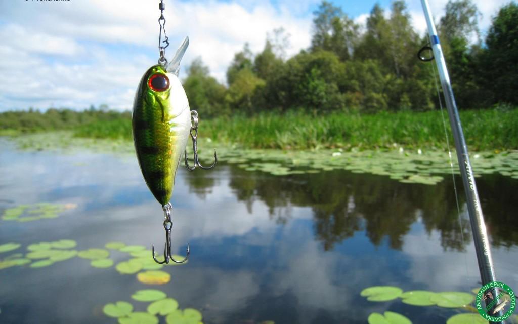 Все для вашей комфортной рыбалки
